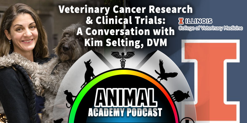 Animal Academy Podcast: Veterinary Cancer Research & Clinical Trials: A Conversation with Kim Selting, DVM