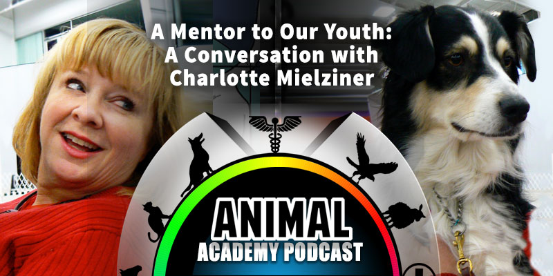 Animal Academy Podcast: A Mentor to Our Youth: A Conversation with Charlotte Mielziner